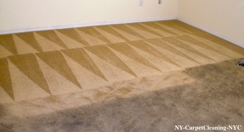 Carpet Cleaning |Upholstery Cleaning| Mattress Cleaning