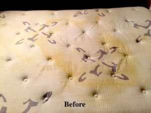 professional mattress cleanig service before