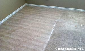 Bronx Carpet Cleaning NY
