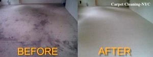 Brooklyn Carpet Cleaning New York